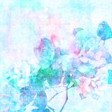 Textured blue bleached roses. On distressed background vector illustration
