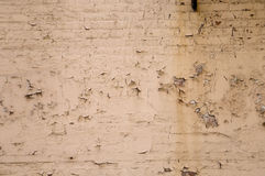 Free Textured Brick Wall For Background Royalty Free Stock Photos - 4951688