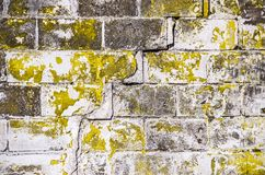 Textured Brick Wall with Yellowish, Greenish Colors. Old brick wall with cracks and chipped paint royalty free stock image