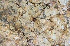 Textured stone background. The textured brown stone background Stock Images