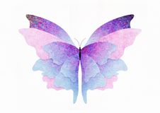 Textured butterfly Stock Image