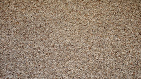Textured carpet abstract Stock Photo