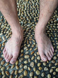 Textured cement  paved with stones and Foot Massage Royalty Free Stock Images