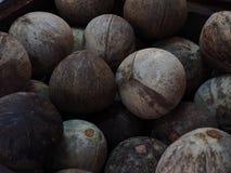 Textured ciemnego brązu skorupy kokosowy tło Obrazy Stock