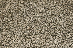 Textured clay soil Stock Photography