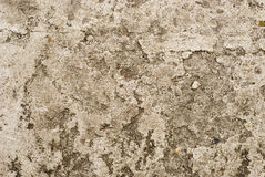 Textured concrete background Stock Images