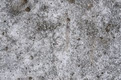 Textured concrete texture Stock Image