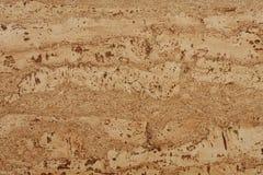 Textured cork - closeup Stock Images