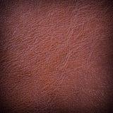 Textured czerwony rzemienny tło Obrazy Royalty Free