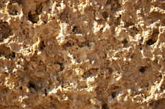 Textured de uma pedra porosa Fotografia de Stock