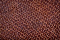 Textured deseniowy na brown zamszowy Zdjęcia Royalty Free