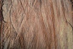Textured drewno powierzchnia Fotografia Stock