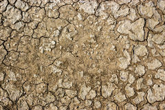 Textured dry ground of separation. Royalty Free Stock Photography