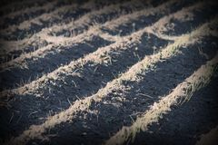 Textured effect on plowed land Stock Photos