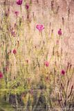 Textured Floral Background Stock Photos