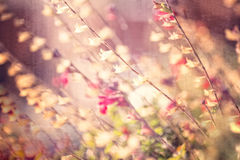 Textured Floral Background. With multiple colors and shapes stock illustration