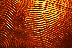 Textured glass Royalty Free Stock Images