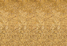 Textured golden background Stock Image