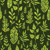 Textured green Leaves Seamless Pattern Background Royalty Free Stock Photography
