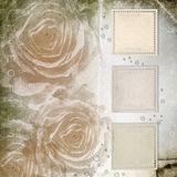 Textured grunge background with  roses Stock Image