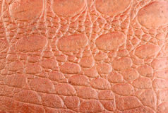Textured i deseniowy brown skóra Zdjęcie Royalty Free