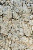 Textured kamienny tło gruzu balast w naturalnej formie w rockowej ścianie obrazy stock