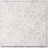 Textured lace background Royalty Free Stock Image