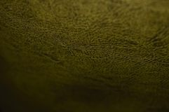 Textured leather gold color close-up stock photos