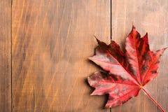Textured liść klonowy nad brown drewnianym tłem, jesieni pojęcie Zdjęcie Royalty Free