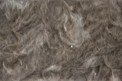 Textured material made from natural ingredients. construction, repair, wallpaper and insulation - textural material for  reconstru. Ction and warming of  home Royalty Free Stock Photo