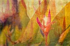 Textured, mergulhado, complexo, fundo floral de um jardim em México Aquarela de Digitas fotografia de stock royalty free