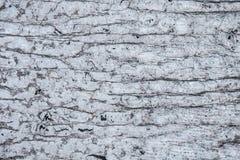 Textured Metallic Background Royalty Free Stock Photos