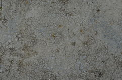 Textured mortar concrete. Old mortar wall on house Stock Photography