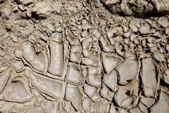 Textured mud Royalty Free Stock Photos