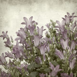 Textured old paper background with Stock Photography