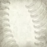Textured old paper background. With fern illustration Royalty Free Stock Photography