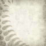 Textured old paper background. With fern illustration Stock Photo
