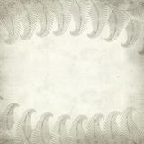 Textured old paper background. With fern illustration Royalty Free Stock Images