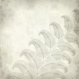 Textured old paper background. With fern illustration Stock Image