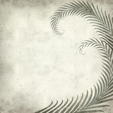 Textured old paper background. With fern leaves illustration Royalty Free Stock Images