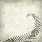 Textured old paper background. With fern leaves illustration Stock Photo