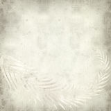 Textured old paper background. With fern leaves illustration Stock Photography