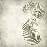 Textured old paper background. With fern leaves illustration Royalty Free Stock Photo