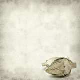 Textured old paper background Royalty Free Stock Photo