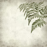 Textured old paper background Royalty Free Stock Photography