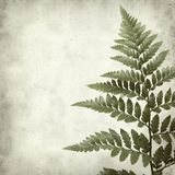 Textured old paper background Royalty Free Stock Photos