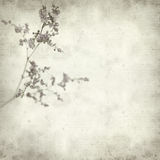 Textured old paper background Stock Photo
