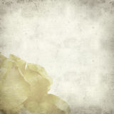 Textured old paper background Stock Images