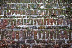 Textured Old stone staircase steps overgrown. With moss and weeds Royalty Free Stock Images