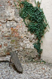 Textured old wall Stock Photo